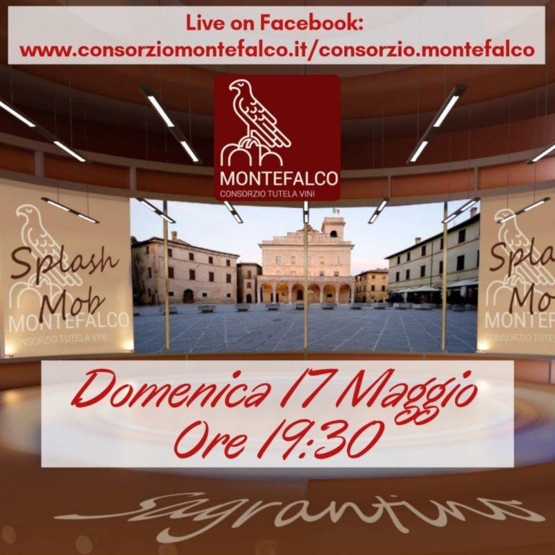 Sagrantino Splash Mob Come in Umbria