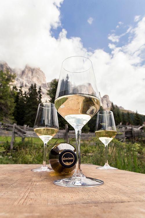 Top of Vini Alto Adige