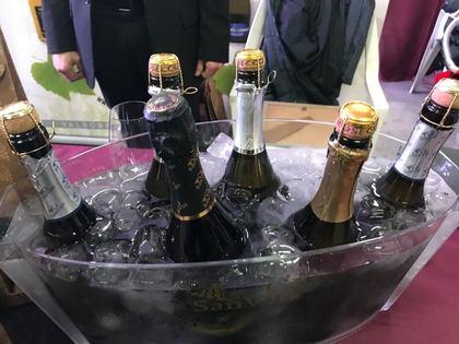 Bassano Wine Festival 2018 - Programma