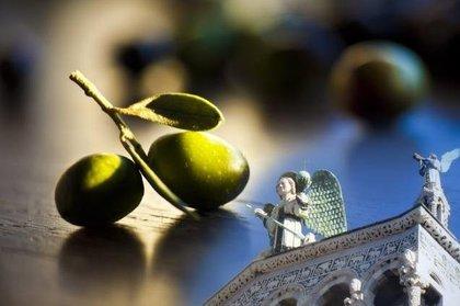 Extra Lucca, mostra mercato dedicata agli oli d'oliva extravergini nuovi d'Italia