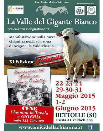 La Valle del Gigante Bianco - Tra cultura e degustazioni - XI Edizione