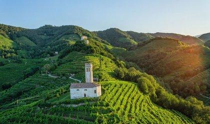 Le colline di Conegliano Valdobbiadene candidate per l'Unesco