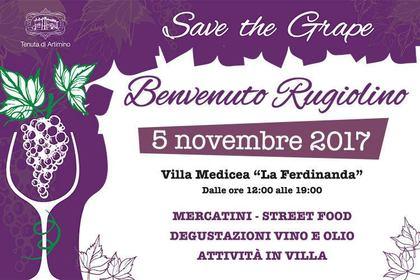 Benvenuto Rugiolino - Villa La Ferdinanda