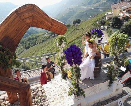 Il calendario delle Trentinowinefest