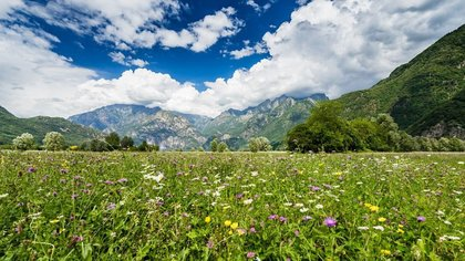 Valtellina: bellezze e sapori d'autunno