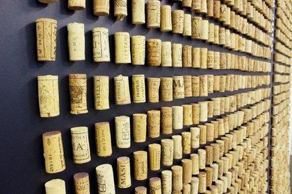 Sapere di tappo: il romanzo che racconta l'oggetto più usato al mondo