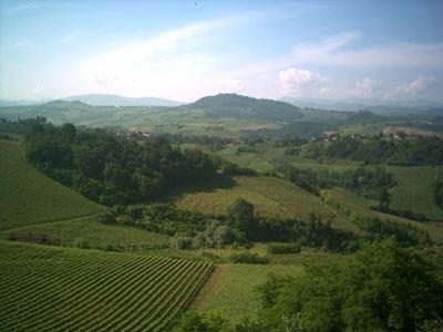 Il Vino degli Isimbardi, passeggiata panoramica tra vigneti, natura e storia