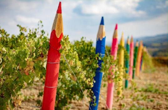 vigna coi matitoni colorati