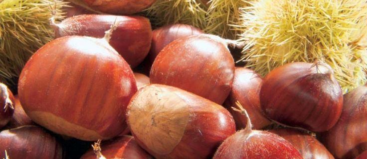 Caldarroste e vin brulè alla Sagra della Castagna di S ...