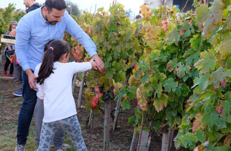 Cantine Aperte in Vendemmia - Abruzzo
