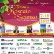 Festa del Moscato di Scanzo e dei sapori scanzesi 2017
