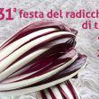 31^ Festa del Radicchio rosso di Treviso a Dosson