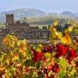 Degustazione di Gutturnio con l'Enoteca Regionale Emilia Romagna