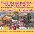Mostra del Radicchio Tardivo