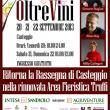 OltreVini 2013 a Casteggio
