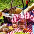 Pic-Nic in Cantina nelle Langhe del Gusto