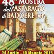 48^ Mostra dell'Asparago di Badoere IGP