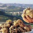 VI Mostra Mercato del Tartufo Marzuolo - Primavera del Gusto Toscana