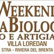 Weekend Strabiologico 2019